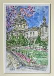 Nicky Jacks Blossom at St Paul's Cathedral Print